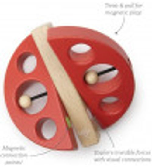 Tegu-Blocos-Giratorios-para-montar-insetos-406
